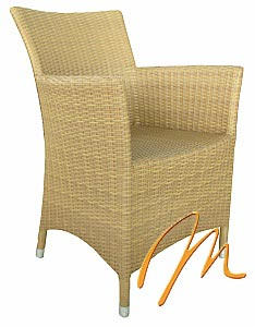 DERIL ARM CHAIR
